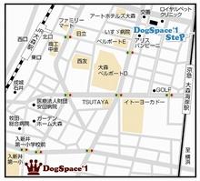 0_MAP_L.jpeg