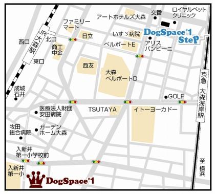 step_dsiMAP.jpg